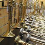 Trompetenvielfalt vor Ort